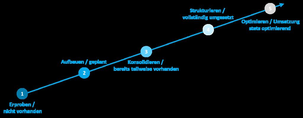 Reifegradmodell und dessen Reifegrade
